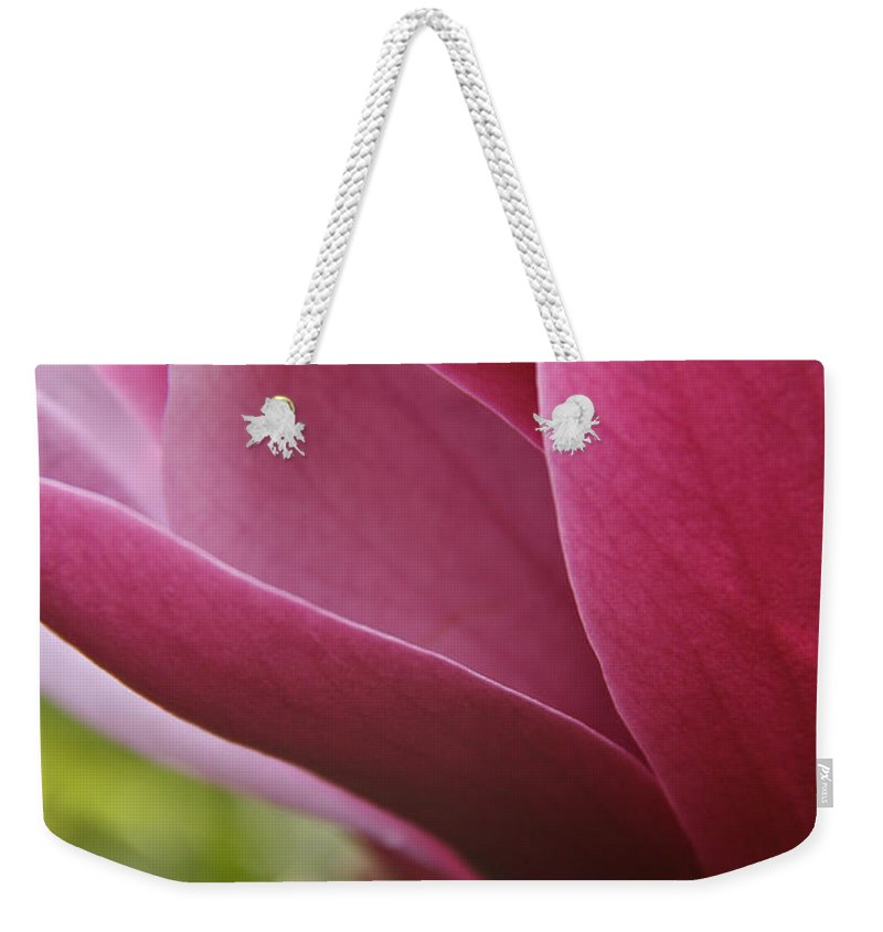 Tulip Tree Weekender Tote Bag featuring the photograph Tulip Tree Flower With Raindrops by Elizabeth Rose