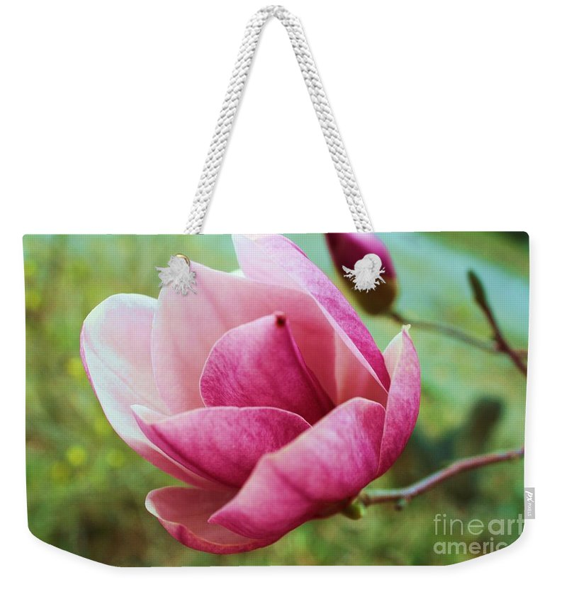 Tulip Tree Flower Weekender Tote Bag featuring the photograph Tulip Tree In Bloom by Tia Patton