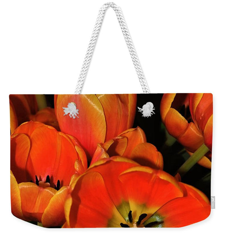 Photography Weekender Tote Bag featuring the photograph Tulips Of Fire by Kaye Menner