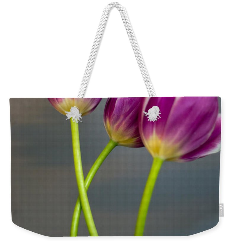 Tulip Weekender Tote Bag featuring the photograph Tulips by Scott Hervieux