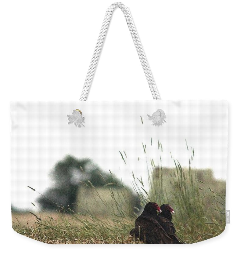 Mccombie Weekender Tote Bag featuring the painting Turkey Vultures by J McCombie