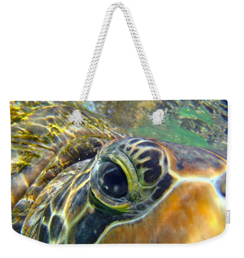 Turtle Weekender Tote Bag featuring the photograph Turtle Eye by Carey Chen