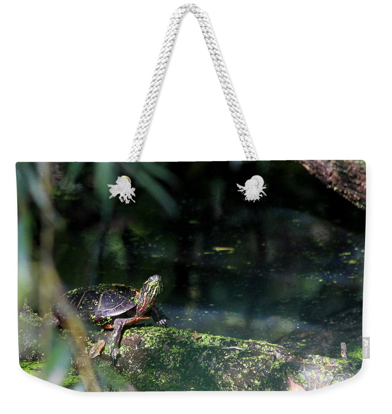 Grotto Weekender Tote Bag featuring the photograph Turtle Grotto by Kenny Glotfelty