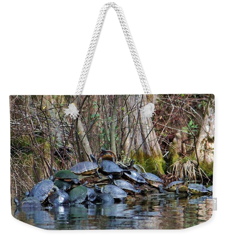 Animal Weekender Tote Bag featuring the photograph Turtle Landing by Cynthia Guinn
