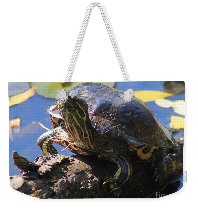Turtle Weekender Tote Bag featuring the photograph Turtle Smile by Kenny Glotfelty