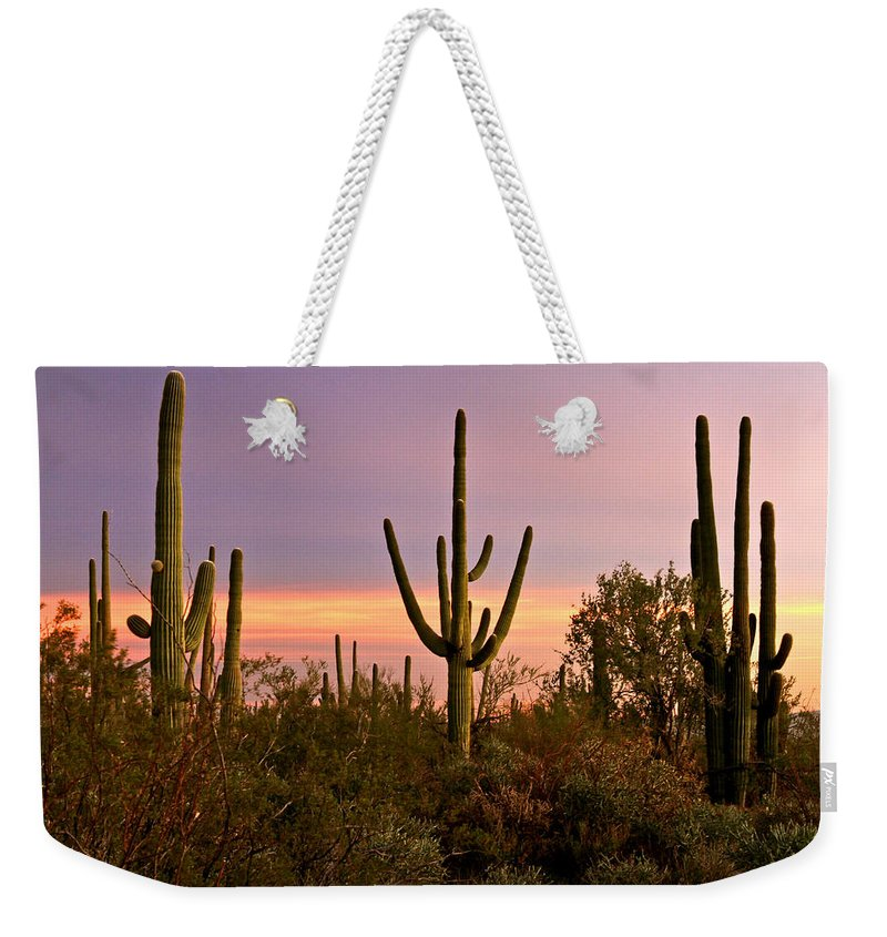 Arizona Weekender Tote Bag featuring the photograph Twilight After Sunset In The Cactus Forests Of Saguaro National Park by Ed Riche