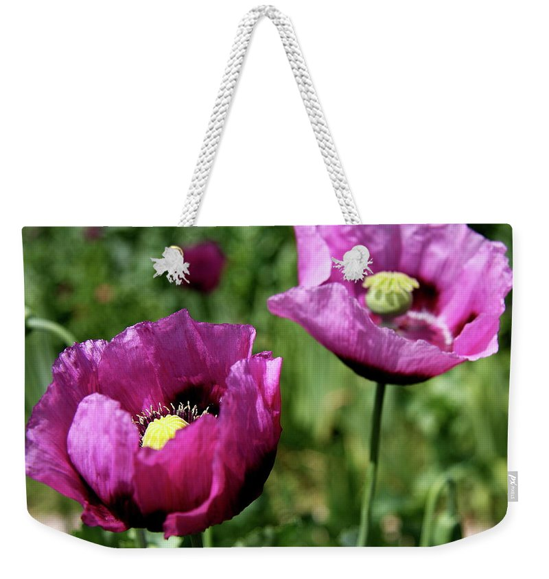 Poppy Weekender Tote Bag featuring the photograph Twin Poppies by Christiane Schulze Art And Photography