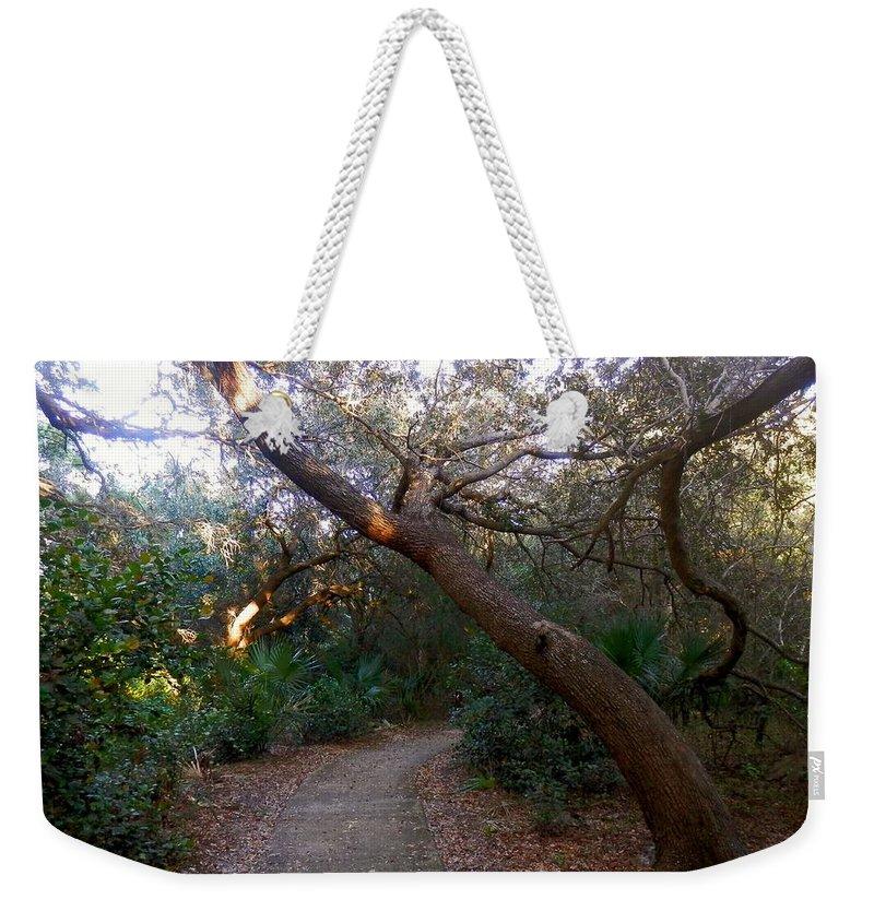 Twisted Oaks Weekender Tote Bag featuring the photograph Twisted Oaks 2 by Joe Wyman