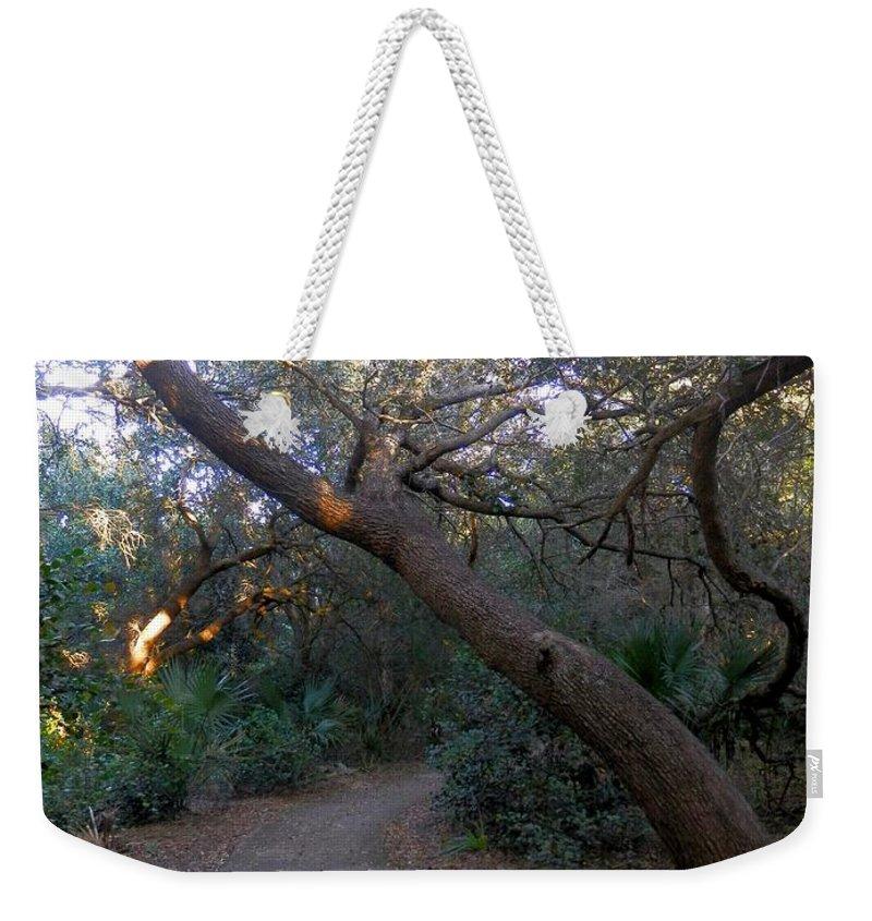 Twisted Oaks Weekender Tote Bag featuring the photograph Twisted Oaks 1 by Joe Wyman