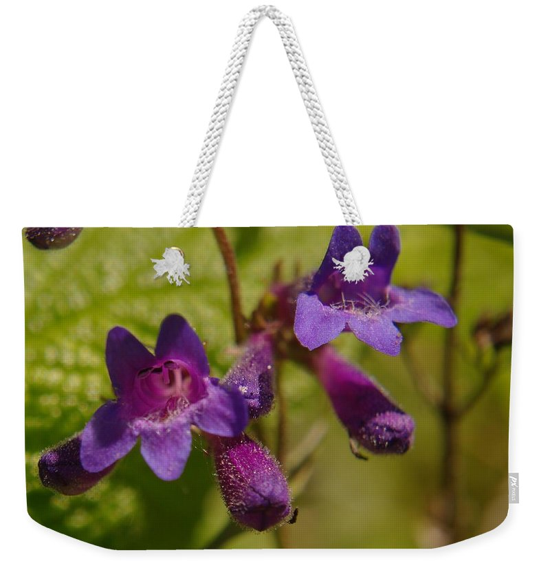 Flowers Weekender Tote Bag featuring the photograph Two Beautiful Twins by Jeff Swan
