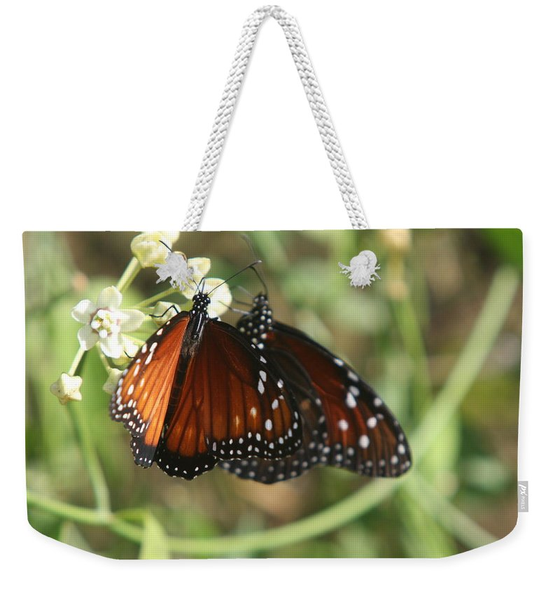 Butterfly Weekender Tote Bag featuring the photograph Two Butterflies by Christiane Schulze Art And Photography