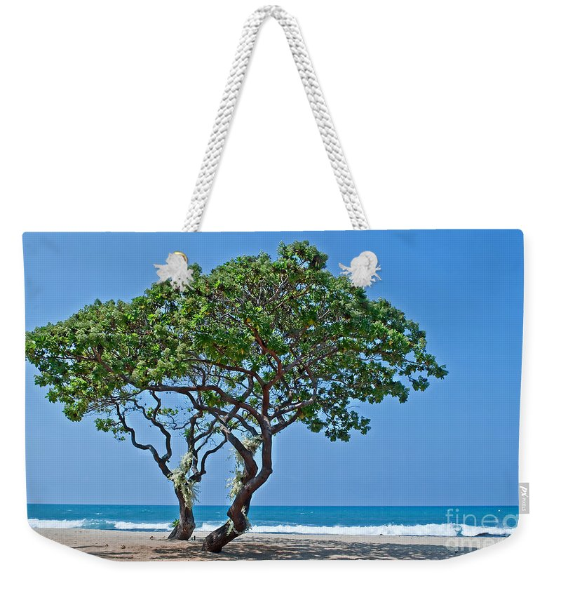 Trees Weekender Tote Bag featuring the photograph Two Heliotrope Trees On Tropical Beach Art Prints by Valerie Garner