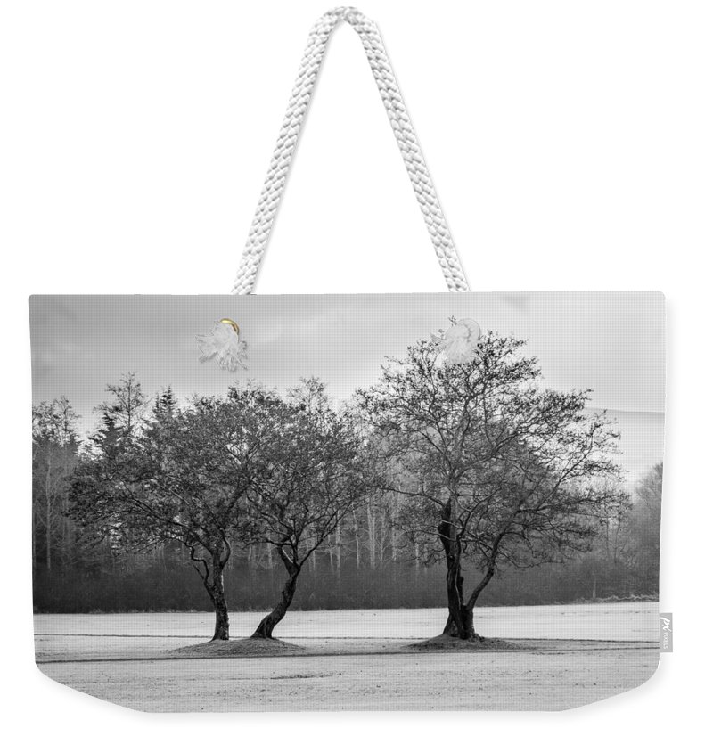 Two Weekender Tote Bag featuring the photograph Two by Jan Stria