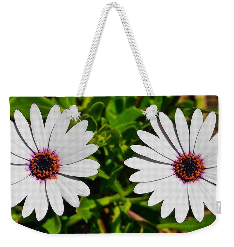 Two Daisies Weekender Tote Bag featuring the photograph Two White Daisies by Richard Cheski