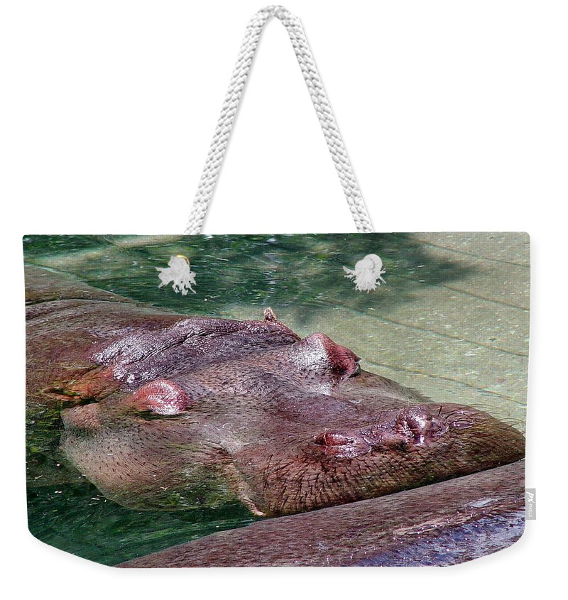 Mammal Weekender Tote Bag featuring the digital art Ultimate Rest by Barkley Simpson
