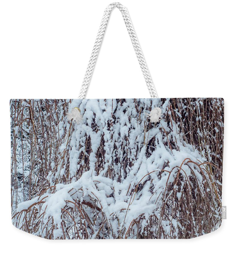 Landscape Weekender Tote Bag featuring the photograph Umbrella Tree by Steve Harrington