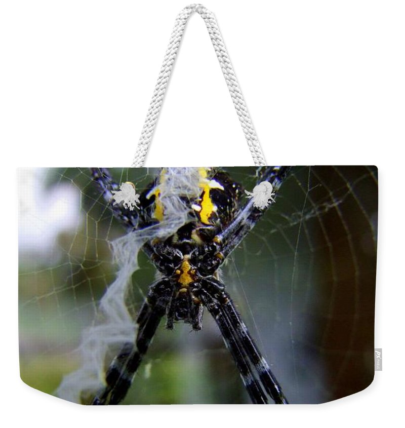 Spider Weekender Tote Bag featuring the photograph Under The Belly Of The Beast by Mary Deal