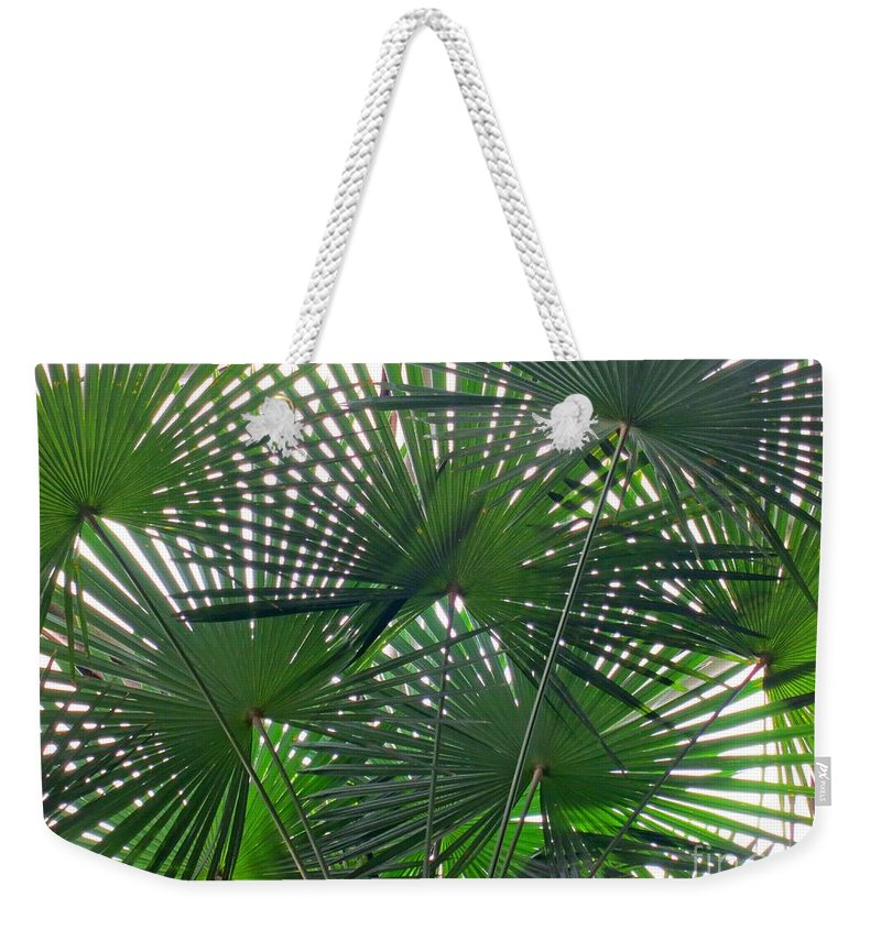Palm Tree Weekender Tote Bag featuring the photograph Under The Palm Tree by Lena Photo Art