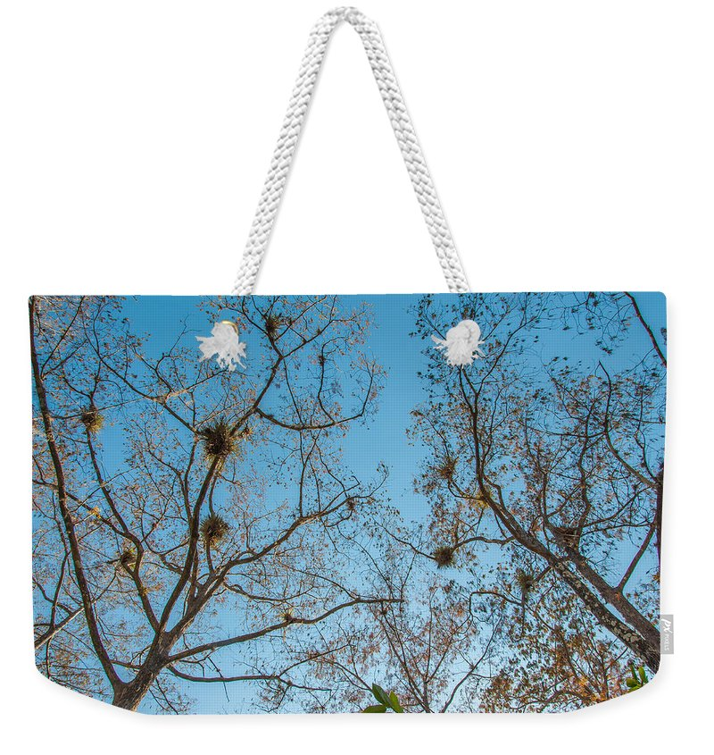 Blue Weekender Tote Bag featuring the photograph Under The Trees by Amel Dizdarevic