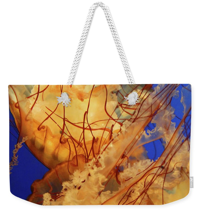 Jelly Fish Weekender Tote Bag featuring the photograph Underwater Friends - Jelly Fish By Diana Sainz by Diana Raquel Sainz
