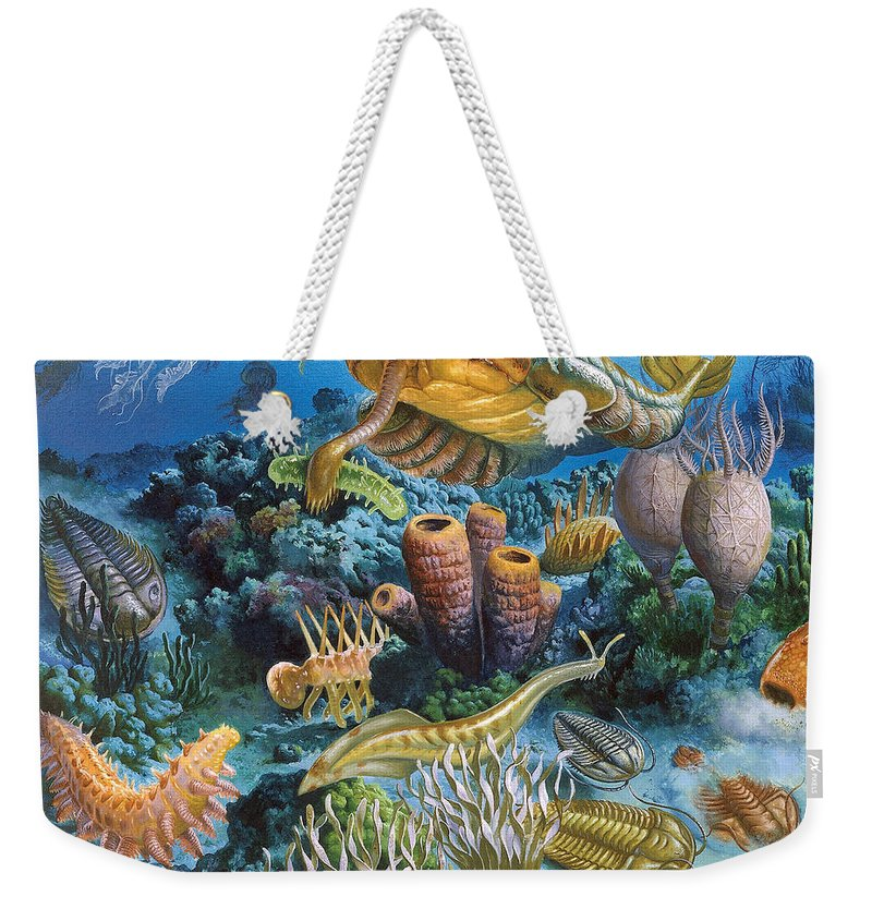Illustration Weekender Tote Bag featuring the photograph Underwater Paleozoic Landscape by Publiphoto