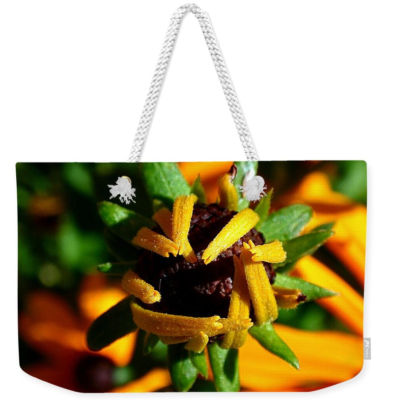 Coneflowers Weekender Tote Bag featuring the photograph Unfolding by Rona Black