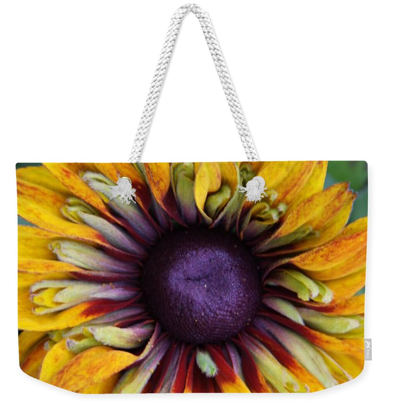 Sunflower Weekender Tote Bag featuring the photograph Unique Sunflower by Christiane Schulze Art And Photography