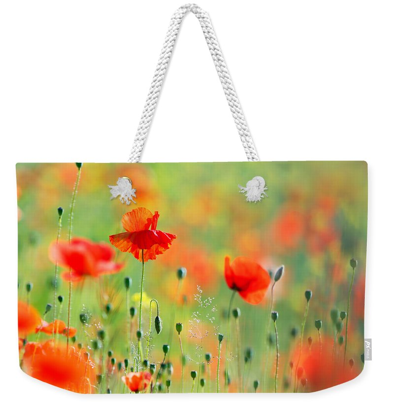 Bokeh Weekender Tote Bag featuring the photograph Untited Colours Of Summer by Roeselien Raimond