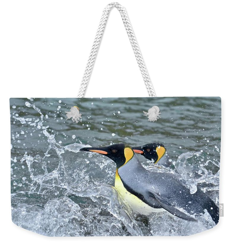 Animal Weekender Tote Bag featuring the photograph Untitled by