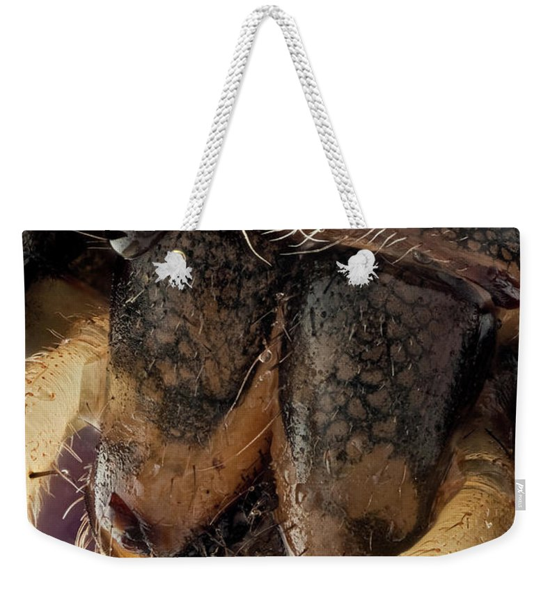 Focus Stacking Weekender Tote Bag featuring the photograph Untitled by Javier Torrent - Vwpics