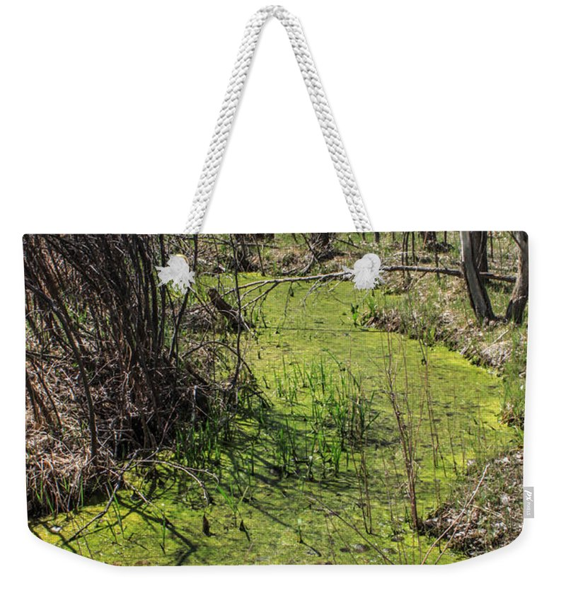 Creek Weekender Tote Bag featuring the photograph Untouched Algae Takeover by Josh Scanlon