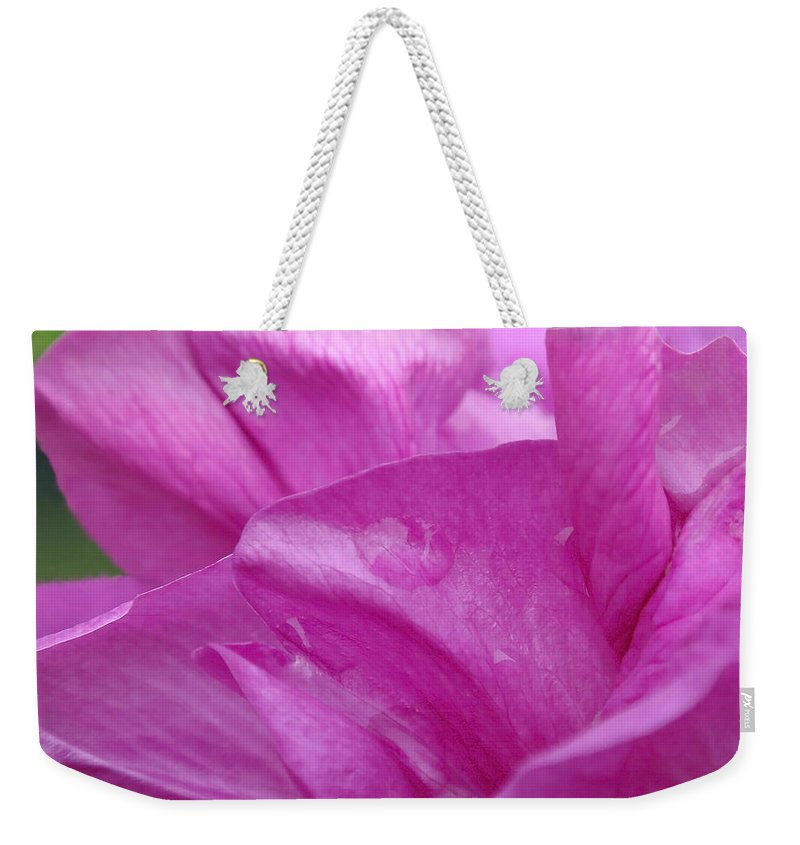 Rose Weekender Tote Bag featuring the photograph Up Close by Rona Black