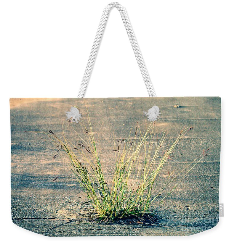 Urban Weekender Tote Bag featuring the photograph Urban Grass by Gary Richards
