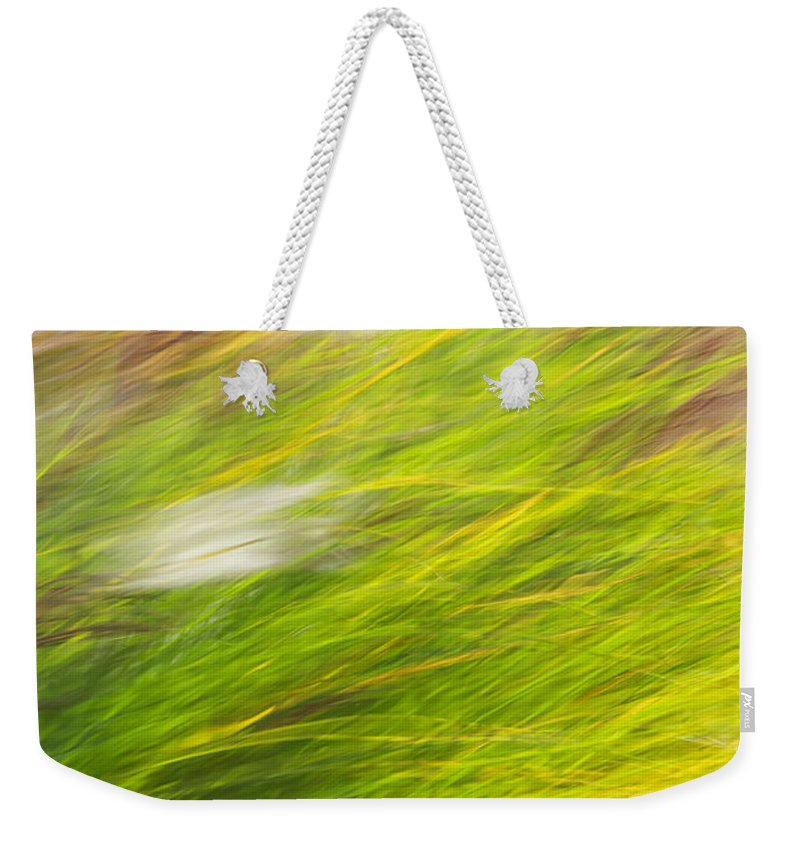 Colorful Weekender Tote Bag featuring the photograph Urban Nature Fall Grass Abstract by Christina Rollo