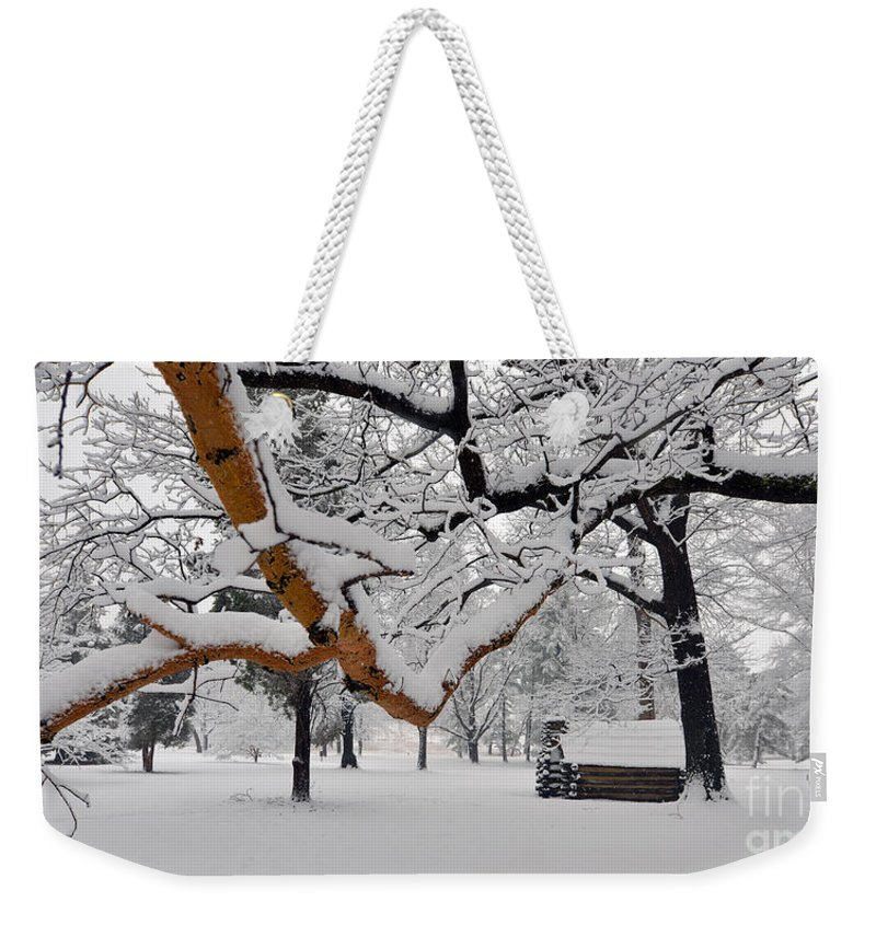 Winter Weekender Tote Bag featuring the photograph Valley Forge Winter 9817 by Terri Winkler
