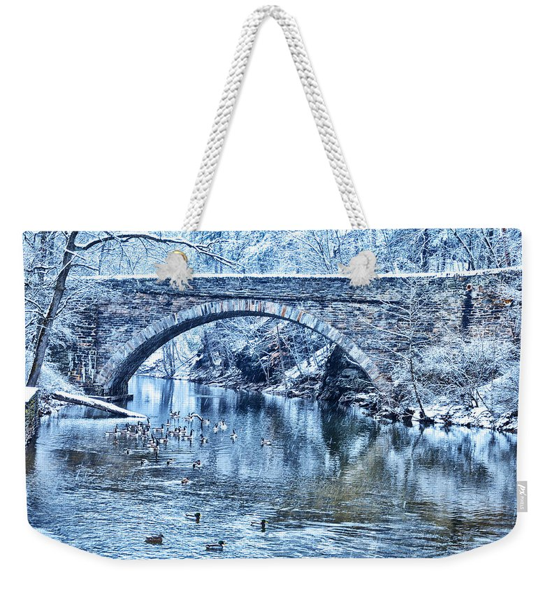 Valley Weekender Tote Bag featuring the photograph Valley Green Ducks In Winter by Bill Cannon
