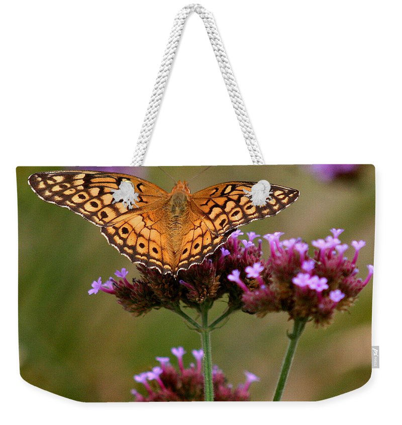 Variegated Weekender Tote Bag featuring the photograph Variegated Fritillary Butterfly Square by Karen Adams