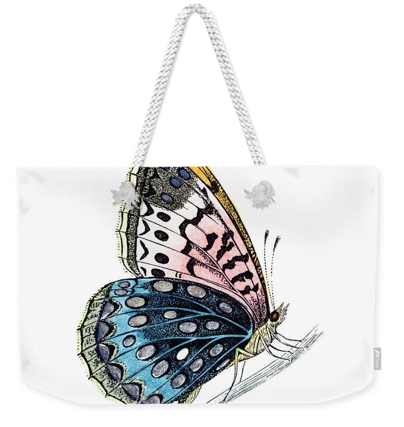 Engraving Weekender Tote Bag featuring the digital art Venus Fritillary Butterfly by Andrew howe