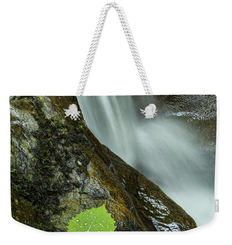 Vermont Weekender Tote Bag featuring the photograph Vermont Aspen Leaf Waterfall Camels Hump Duxbury by Andy Gimino