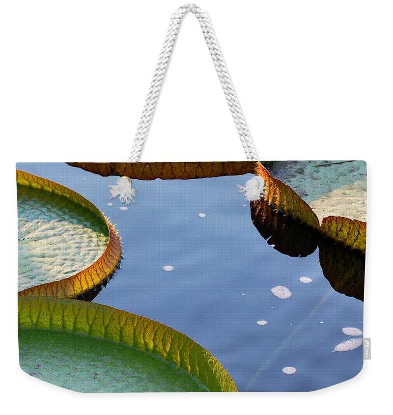 Waterlily Weekender Tote Bag featuring the photograph Victoria Waterlilies by Nancy Mueller