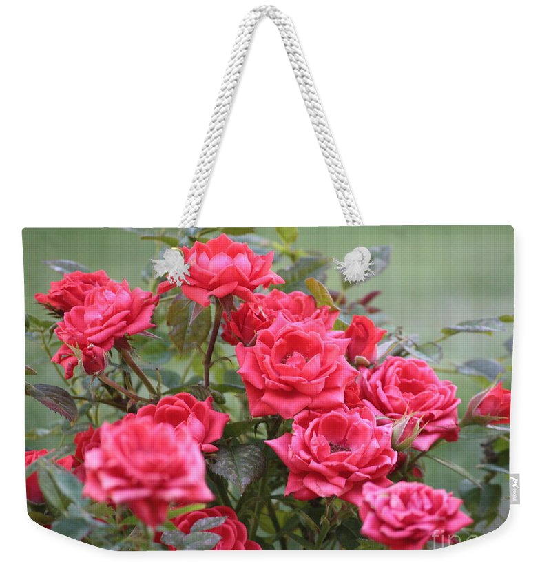 Roses Weekender Tote Bag featuring the photograph Victorian Rose Garden by Carol Groenen