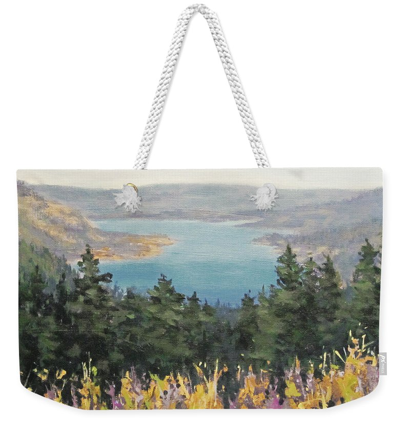 River Weekender Tote Bag featuring the painting View From Above by Karen Ilari