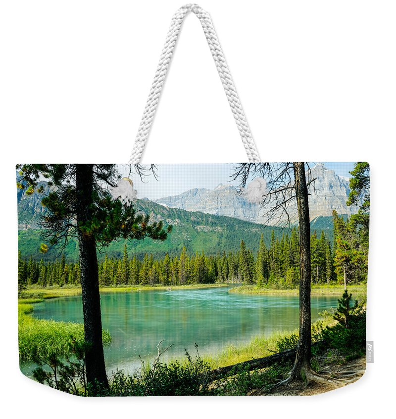 Alberta Weekender Tote Bag featuring the photograph View Of Mistaya Between The Trees by Douglas Barnett