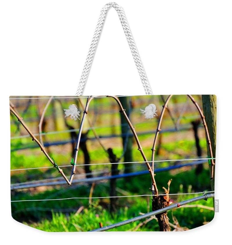 Agriculture Weekender Tote Bag featuring the photograph Vines On Wire 22637 by Jerry Sodorff