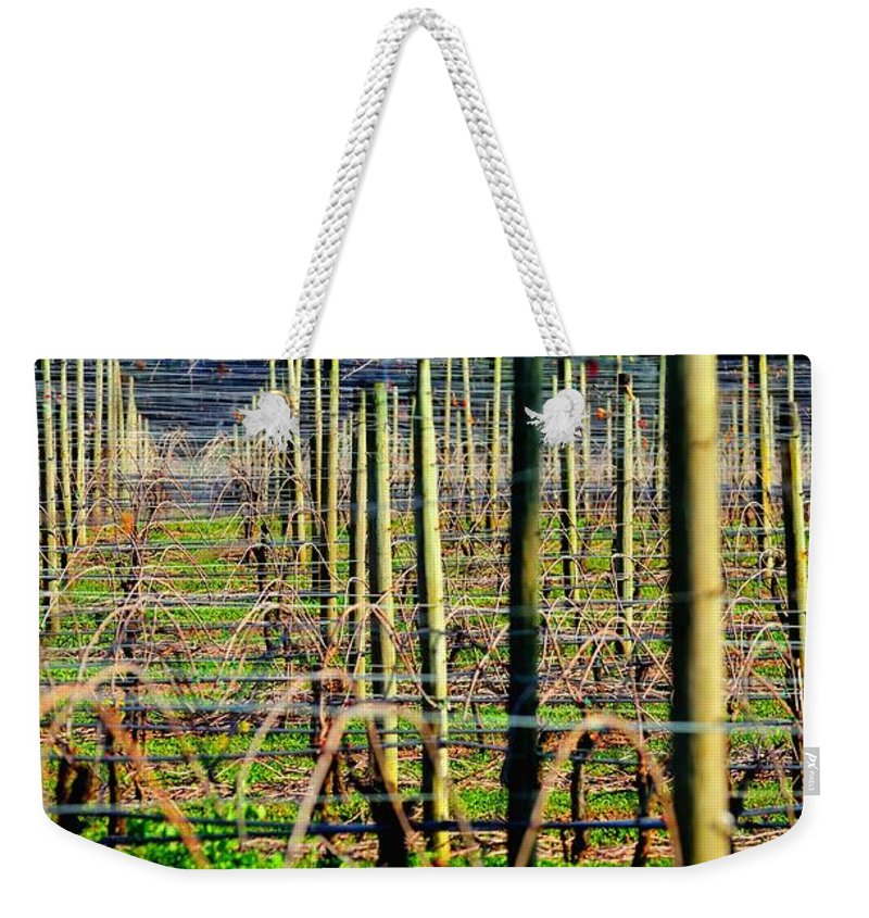 Agriculture Weekender Tote Bag featuring the photograph Vines Poles 22649 by Jerry Sodorff