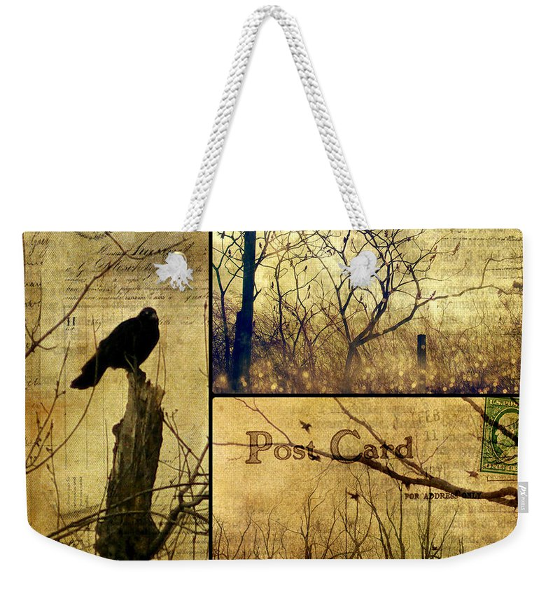 Birds Weekender Tote Bag featuring the photograph Vintage Birds Collage by Gothicrow Images