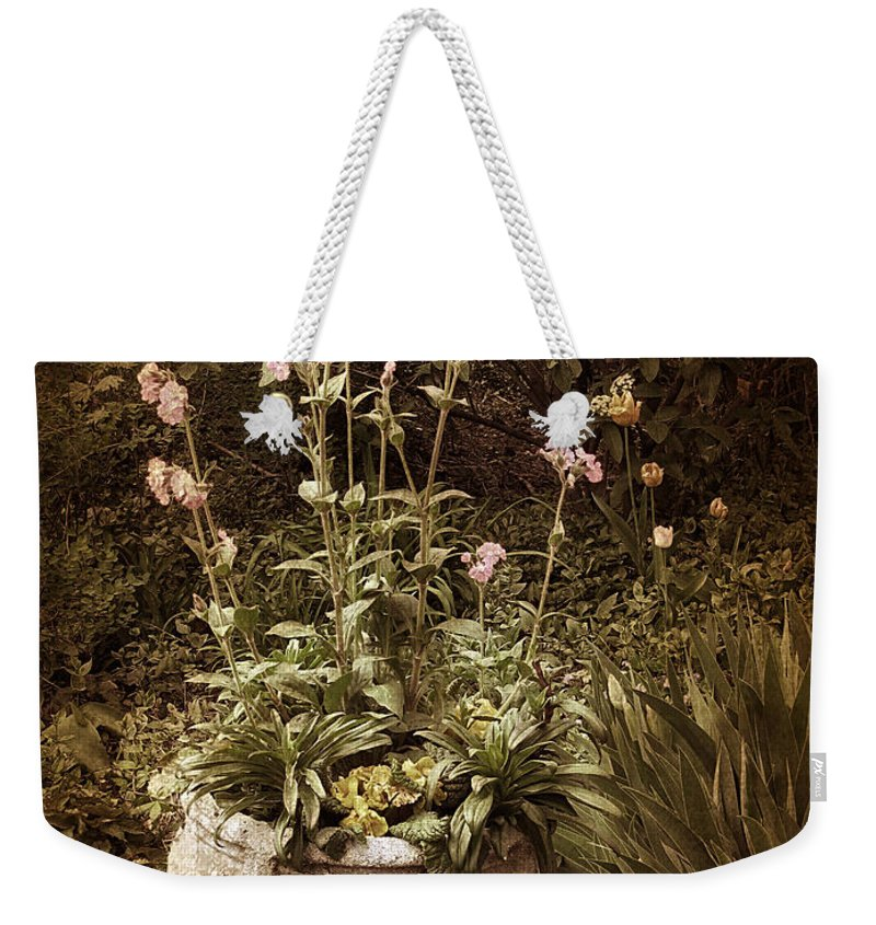 Planter Weekender Tote Bag featuring the photograph Vintage Planter by Jessica Jenney