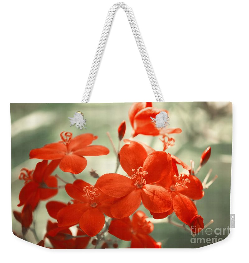 Photography Weekender Tote Bag featuring the photograph Vintage Red Flowers by Jackie Farnsworth