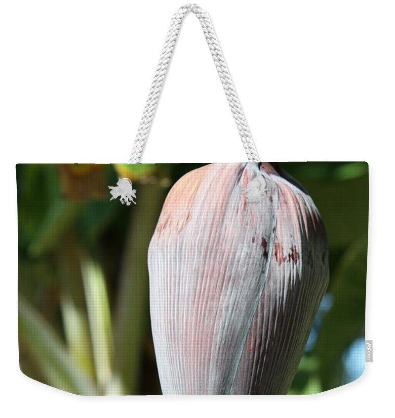 Banana Tree Weekender Tote Bag featuring the photograph Violet Banana Blossom by Christiane Schulze Art And Photography
