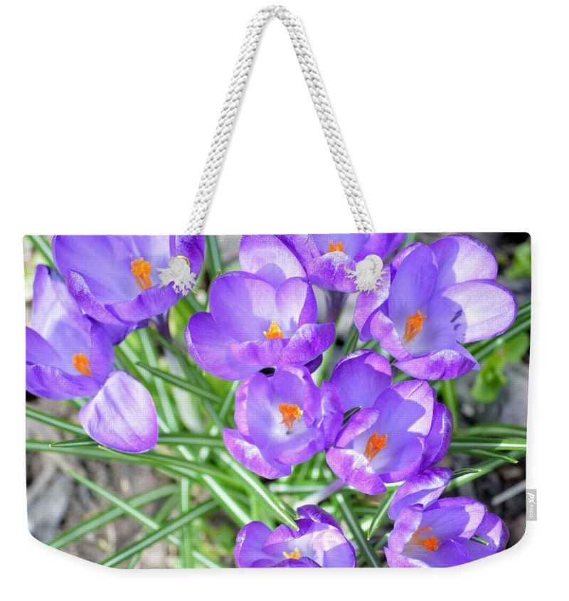 Beautiful Lilies Bunch Weekender Tote Bag featuring the photograph Violet Lilies by Sonali Gangane
